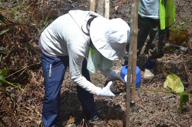 planting03_convert_20161114102144