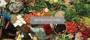 beyond_malaysia_top